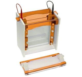 Sistem electroforeza vertical Maxi